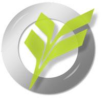 Vine Type Logo
